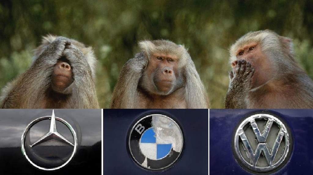 vw-maymun-bmw-mercedes